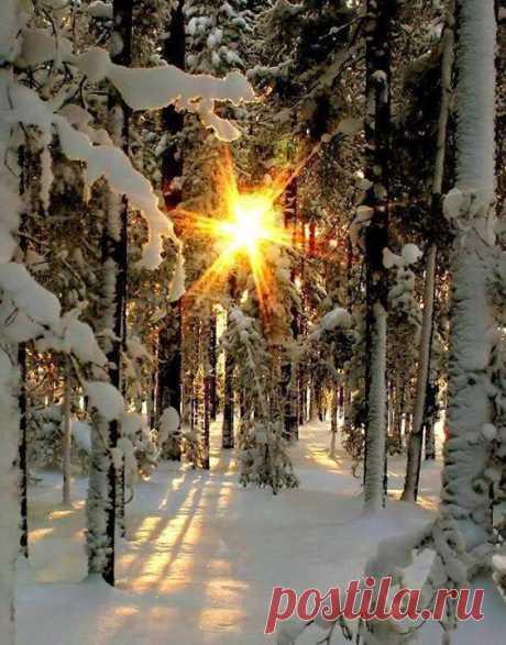 Рассвет... Прекрасный набор из ☀ Фантастика. Чудный рассвет...Рассвет с благословения...сказочная Красота. Какой красивый пейзаж. Непревзойденный.Они действительно отражают красоту природы, хотя бы очень холодно, но было бы стоит посетить такие место.