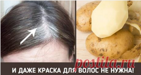 Натуральное средство от седых волос Помойте седые волосы этим средством — и вас ждёт сюрприз!