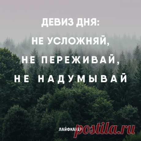 Золотые слова! 🤞