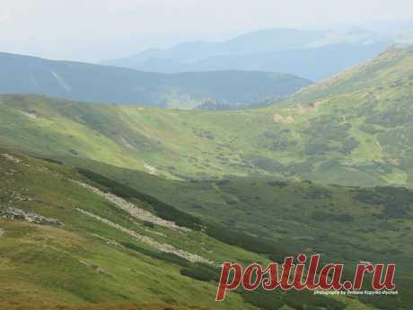 Чорногора ..опису не піддається.