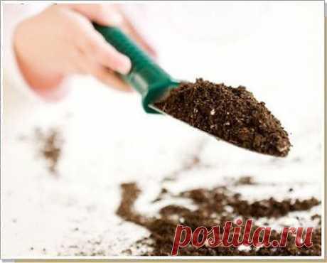 Простой способ определения кислотности почвы » Садовед