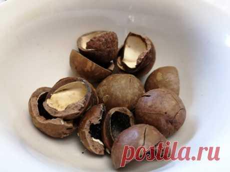 Макадамия. Самый дорогой орех, который нужно открывать ключом