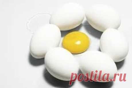 Польза и вред куриных яиц.