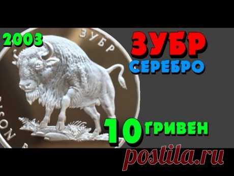 Зубр,  10 гривен, серебро, 2003 год (Обзор монеты) - YouTube