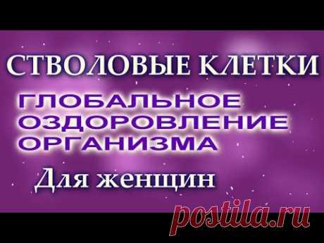 СТВОЛОВЫЕ КЛЕТКИ ГЛОБАЛЬНОЕ ОЗДОРОВЛЕНИЕ ОРГАНИЗМА Для женщин. Сытин Г.Н. (без муз) - YouTube