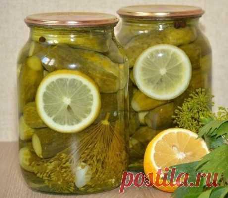 Маринованные огурчики с лимоном: съедаешь огурчик а рассолом запиваешь — вкуснятина!