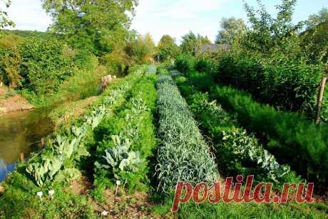 (3) La Ferme Biologique du Bec Hellouin (permaculture) - Главная