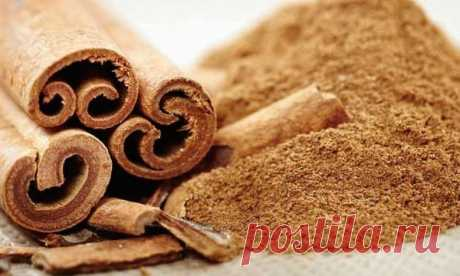 Польза корицы для здоровья: снижает сахар и уменьшает холестерин | Здоровье | MedikForum.ru