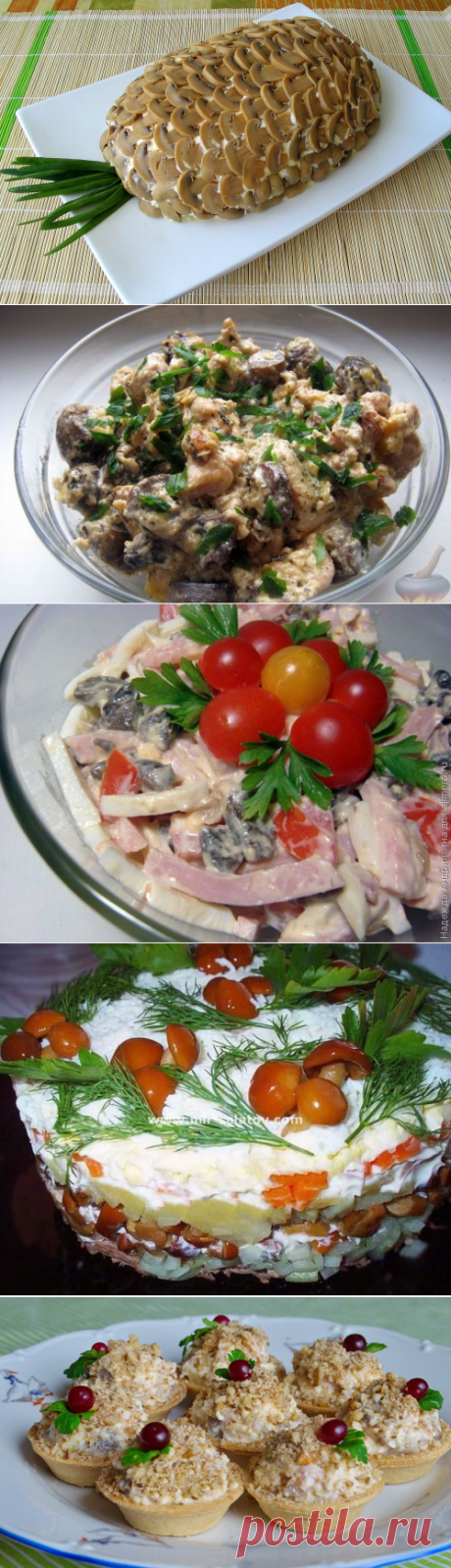 Самые вкусные салаты с грибами » Женский Мир