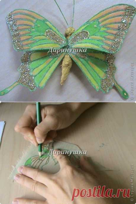 Las mariposas mágicas   Samodelkino