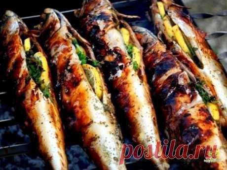 Фаршированная скумбрия на углях, в разы вкуснее, чем шашлыки. Рыбу для этого можно использовать конечно же любую, но мы предпочитаем скумбрию, так в ней нет мелких костей, допустим как у сельди