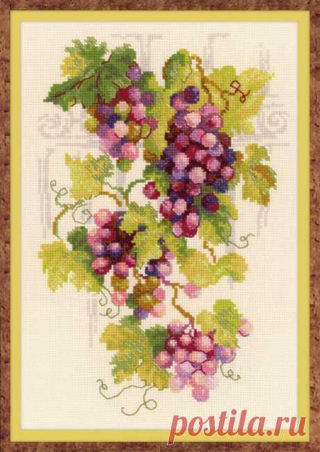 Виноградной лозы ароматная гроздь.. крестиком