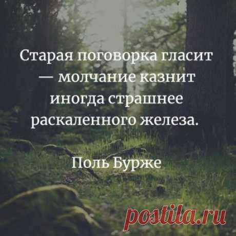 «(99) Одноклассники» — карточка пользователя Светлана М. в Яндекс.Коллекциях