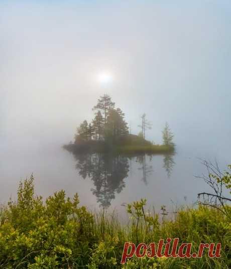 Туманный летний рассвет на озере. Север Ленинградской области. Автор фото – Федор Лашков: nat-geo.ru/photo/user/27510/