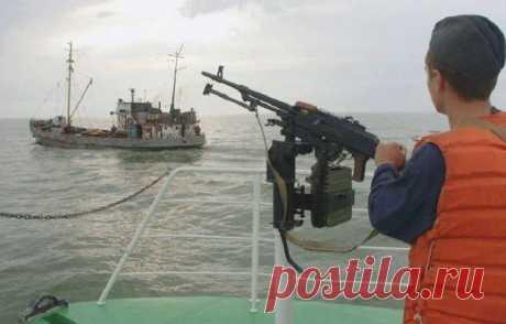 В ФСБ назвали причину нападения браконьеров из КНДР на пограничников | Армия