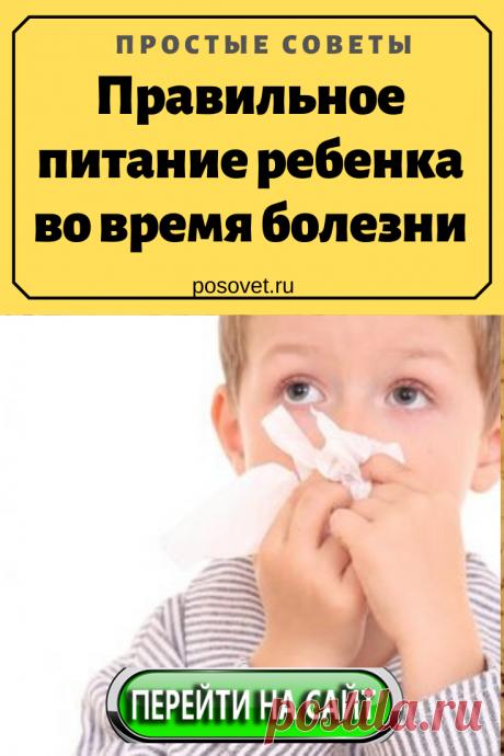 Правильное питание ребенка во время болезни Во время простуды или отравления каждый ребенок склонен отказываться от еды, в том числе и ранее любимых продуктов. В статье рассмотрены ценные советы...
