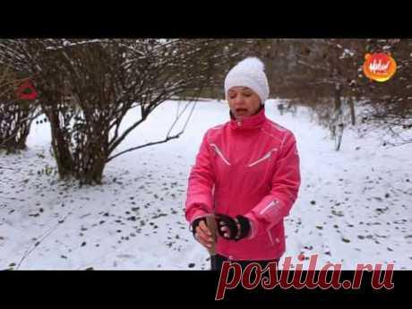 Скандинавская ходьба: техника базового шага