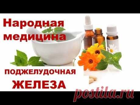 Травы для лечения печени и поджелудочной железы: перечень того, что нужно пить
