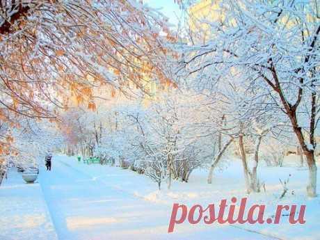 Зимние ритуалы наденьги, успех илюбовь Потрадиции, именно зимой люди начинают готовиться кновой жизни ипытаются изменить себя и свою судьбу к лучшему. Если выхотите обрести богатство, любовь истать успешнее, воспользуйтесь зимними ритуалами.