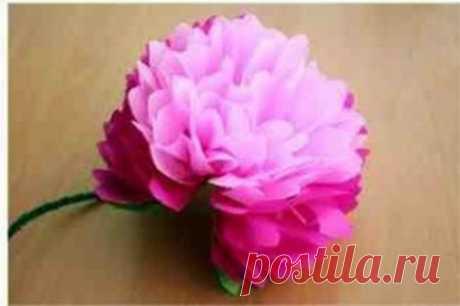 Пышный цветок из бумаги гармошкой