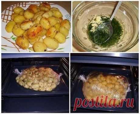 Лучшие кулинарные рецепты: Картофель к праздничному столу - быстро, вкусно, красиво!