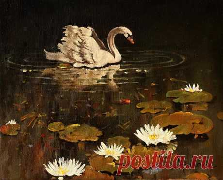 lonely swan Oil on canvas 30×40cm Buy the Original Painting… price 430$