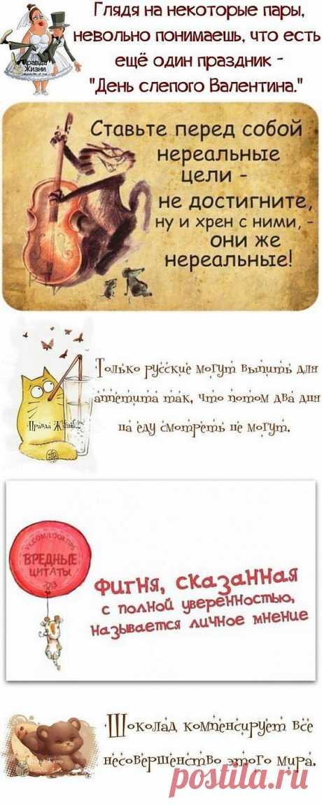 Фразы с картинками / Приколы