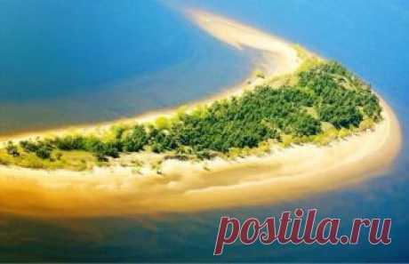 Острова старой Волги около Ульяновска.  ПАЛЬЦИНСКИЙ  ОСТРОВ