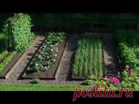 Оригинальные идеи как сделать красивые высокие грядки на даче или в огороде - YouTube
