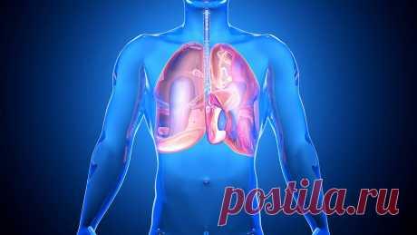 Здоровье легких Если вы болели воспалением легких, имеете хронические заболевания легких или просто хотите их укрепить, чтобы не заболеть, вам будет полезно узнать про комплексный подход к оздоровлению легких с точки зрения традиционной китайской медицины (ТКМ). Она рассматривает заболевание органа не отдельно, а в неразрывной связи со всеми системами организма. Например, ваша сутулая спина затрудняет нормальную работу […] Читай дальше на сайте. Жми подробнее ➡
