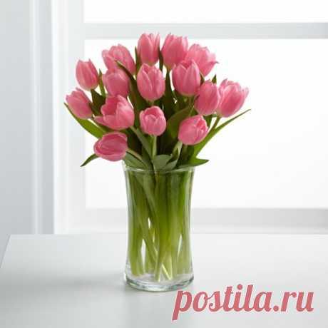 Как сохранить цветы в вазе дольше? — Чудеса