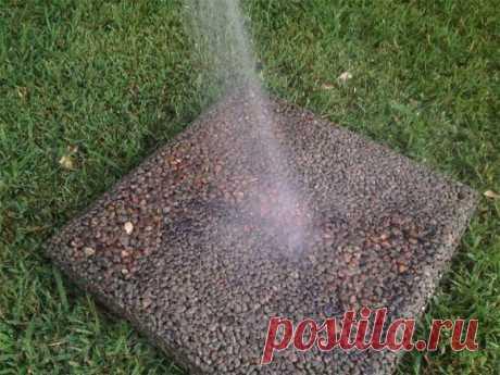 Плитка для садовой дорожки своими руками. Фотоинструкция RMNT.RU