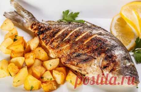 Как идеально приготовить рыбу дорадо? 5 вариантов — Вкусные рецепты
