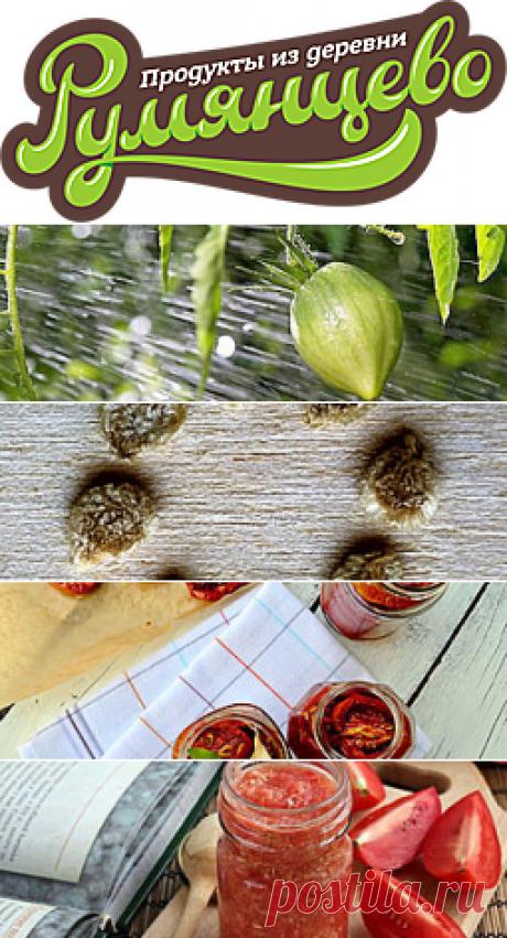 коллекционные сорта томата почтой на freshtomat.ru