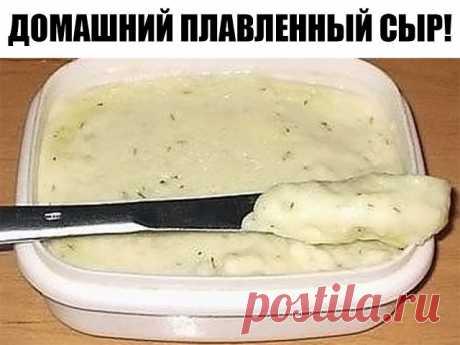 Домашний плавленный сыр! Просто и аппетитно! Никаких растительных жиров и вредных консервантов! Приготовить домашнего плавленого сыра можно много, хранится в холодильнике он долго, так что будете наслаждаться бутербродами с натуральным вкуснейшим