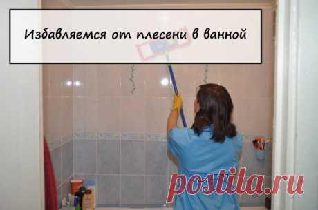 «бюджетные» способы борьбы с плесенью в ванной.