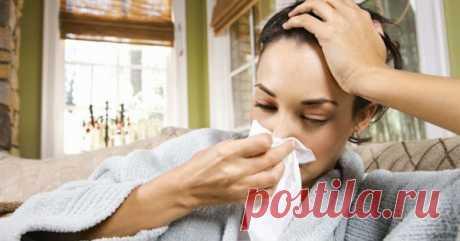 Как побороть вирус гриппа за первые 6 часов Никто не любит болеть, особенно гриппом. Когда ты чувствуешь себя полностью разбитым, нос заложен, горло болит, температура, озноб, головная боль… в общем, не самое приятное состояние. А ведь болезнь можно …