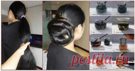 3 самодельных домашних тоника для волос для сильных, здоровых и блестящих волос - Советы для женщин
