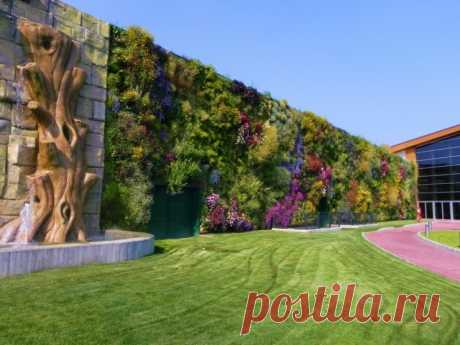 The blossoming wall: a vertical garden in Rossano
