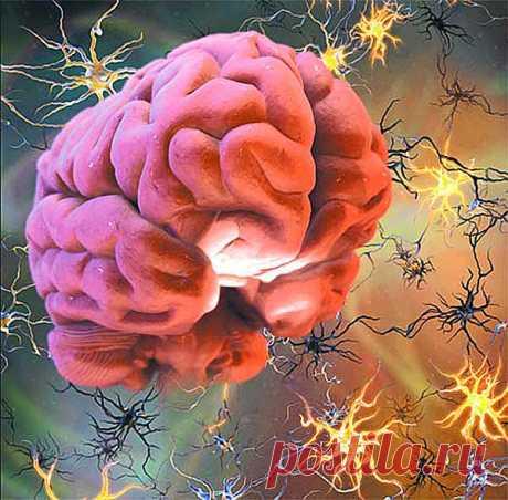 Все болезни - от нервов