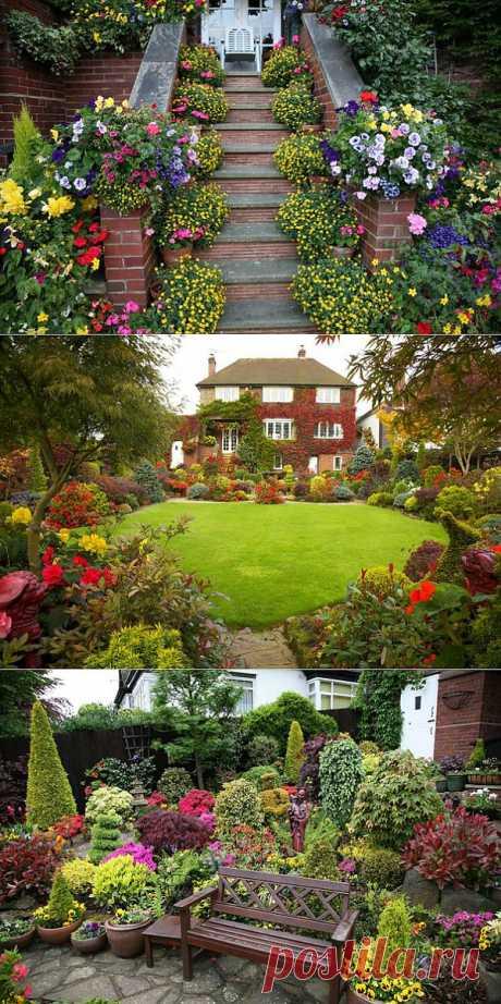 Садовые цветочные композиции.