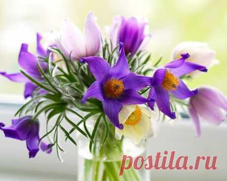 Так просто поставить в вазу букет... И дом наполнится красотой... Не важно какой у букета цвет... Главное, - он с добротой...