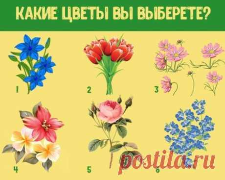 Тест: Какие цветы вы выберите | Секреты.нет