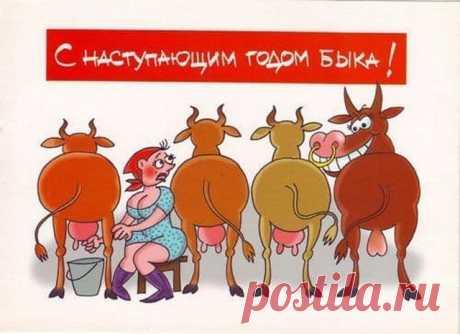 Анекдоты-30