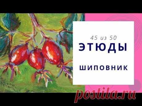 4️⃣5️⃣ ШИПОВНИК (гуашь+масляная пастель). Серия «50 этюдов»