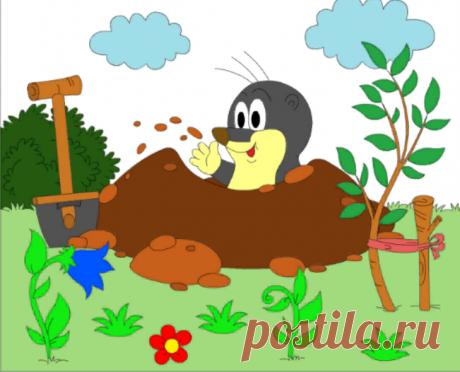 Картинка крота для раскрашивания - онлайн раскраска для всех детей