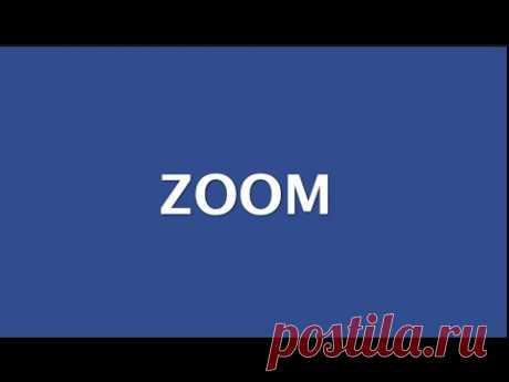 ZOOM инструкция для учителей