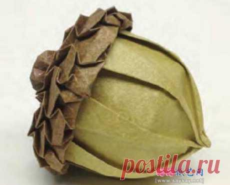 JoNakashima 的逼真橡子手工折纸教程 _ 植物折纸 _ 折纸教程 (一) -