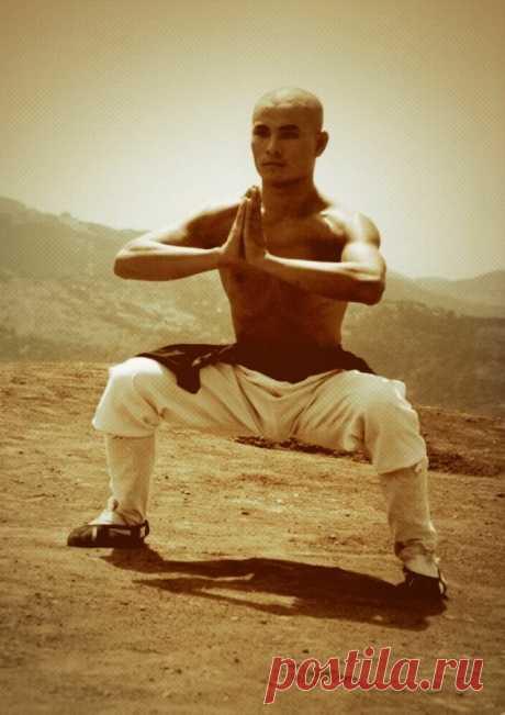 Комплексное упражнение от закрепощенность тазобедренных суставов и для подвижности позвоночника   Wolf Fit   Яндекс Дзен