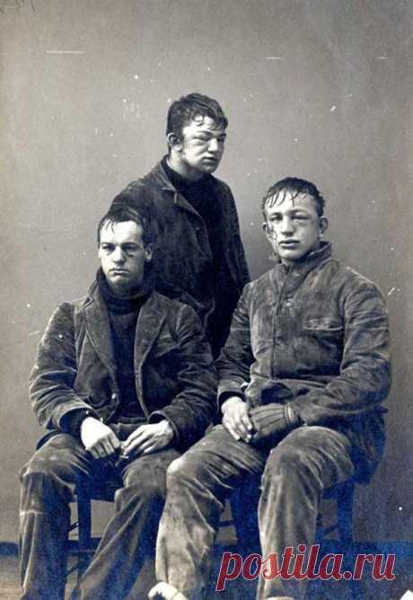 Студенты Принстонского университета после битвы в снежки между первокурсниками и второкурсниками в 1893 году.